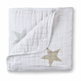 Dream Blanket:super star scout*fawn star