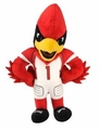 "Arizona Cardinals NFL 8"" Plush Team Mascot"