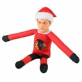 NHL Player Elves and Team Elves