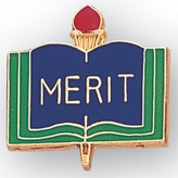 MERIT PIN ACADEMIC ENAMELED