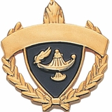 PLAIN ACADEMIC AWARD PIN FOR ENGRAVING
