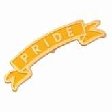 PRIDE PIN ENAMELED