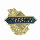 SCHOLASTIC PIN CLASS OF 2014