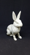 Cast Iron Rabbit