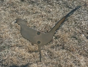 Metal Pheasant Critter with metal stake