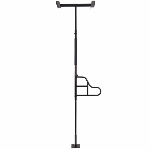 EZ Assist Pole and Rotating Handle