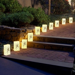 Star Luminaries 12ct