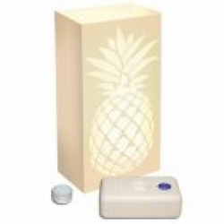 Luminary Kit - Pineapple (Welcome)