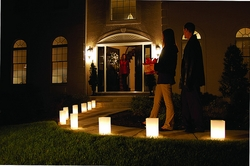 Luminary Lantern Kit - 10 Plastic Lanterns