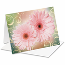 Custom Print Greeting Cards