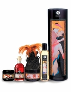 Shunga Carnal Pleasures Collection