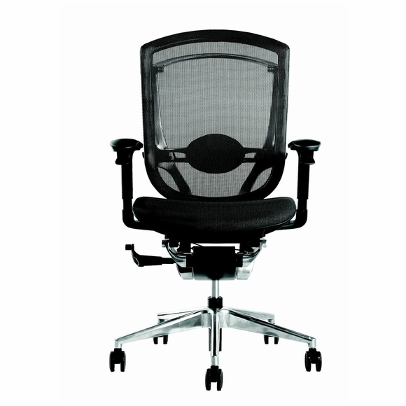 Ergo Fit Highly Adjustable Mesh Office Chair