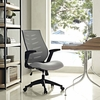Force Mesh Office Chair