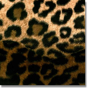 Leopard Print Fabric cut by the yard