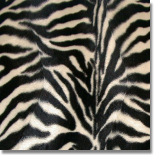 Zebra Print Fabric cut by the yard