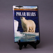 Polar Bears DVD