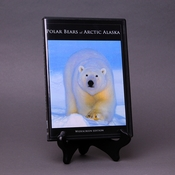 Polar Bears of Arctic Alaska DVD