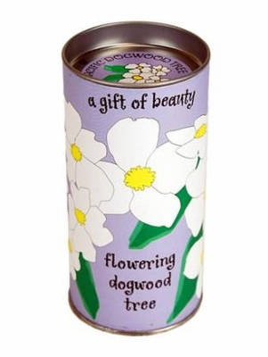Flowering Dogwood Tree Kit