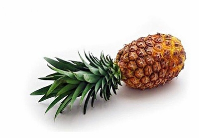 "Pineapple Plant - Ananas - Great Indoors/Out - 4"" Pot"