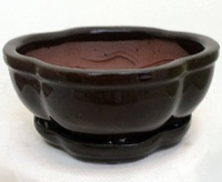 Pro Bonsai Pot/Saucer Pre-Wired/Screened