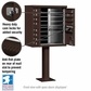 Cluster Box Unit - 12 A Size Doors - Type II - Bronze - USPS Access
