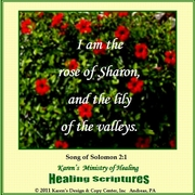 I Am The Rose Of Sharon The Song of Solomon 2:1 KJV