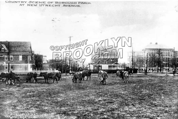 10th Avenue at 43rd Street, looking toward New Utrecht Avenue, also showing PS 131, 1912