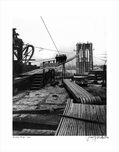 Brooklyn Bridge 1875