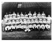 Brooklyn Dodgers Team Photo