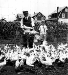 Chicken farmer, Canarsie, c.1940