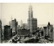 City Hall & the Woolworth Building