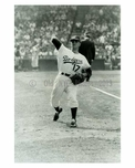 Early 1950's Brooklyn Dodger - Erskine Pitching