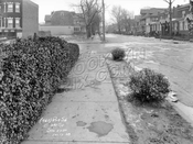 East 3rd Street looking north to Caton Avenue, 1928