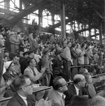 Fans at Ebbets Field, 1956 Flatbush Brooklyn