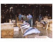 Fulton Fish Market Manhattan, NYC 1964