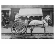Horse & Wagon outside Klinger Meat Market 35 Greenwich Ave  - Greenwich Village 1890 NYC