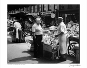 Lower Manhattan Street Vendor 1958