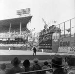 Outfield scene during 1956 World Series