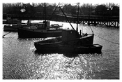 Sheepshead  Bay 1939
