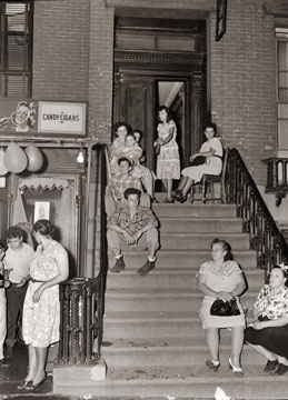 Stoop Scene Carroll Gardens Brooklyn 1948