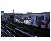 Sutter Ave Elevated Subway with Graffiti