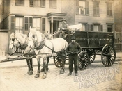 Two-horse team, Cobble Hill, 1910