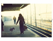 Woman & dog commute 1970's