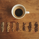 Coffee Roast Profiles