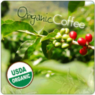 Wholesale Organic Coffees