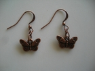 Decorated Copper Butterflies