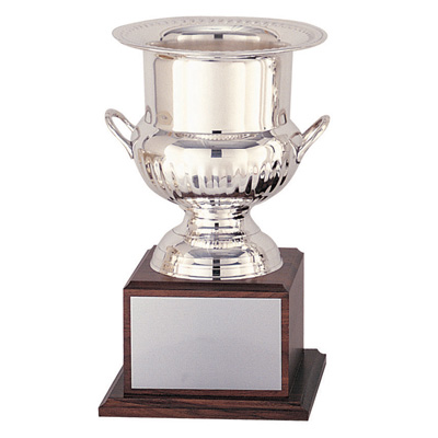 14 Inch Polished Stainless Steel Wine, Champagne or Ice Cooler Award