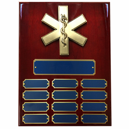 9 X 12 Inch Perpetual Cherry Piano Finish Plaque with Paramedic Star of Life