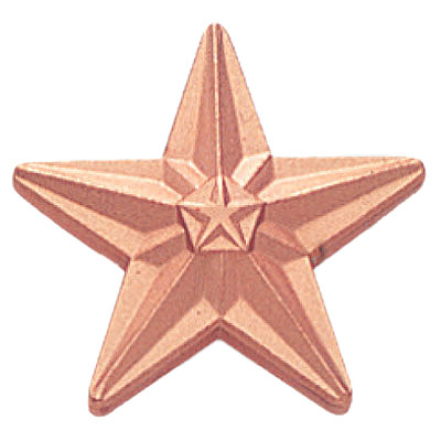 3/4 Inch Bronze Star Polished Lapel Pin