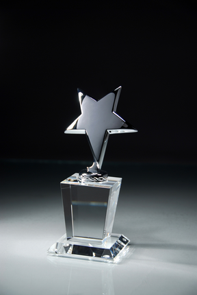 7-1/2 Inch Polished Silver Star on Optical Crystal Base Award